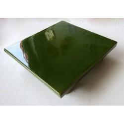 Dynamiseur d'aliments carré en vert