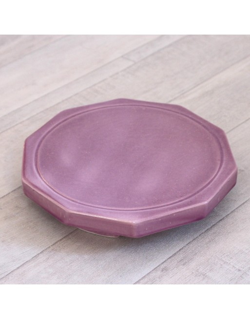 Dynamiseur d'aliments décagone violet